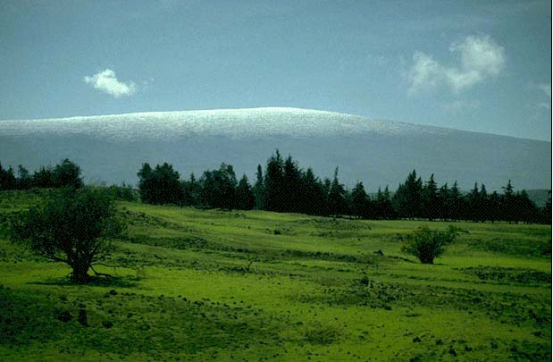 Mauna loa 3