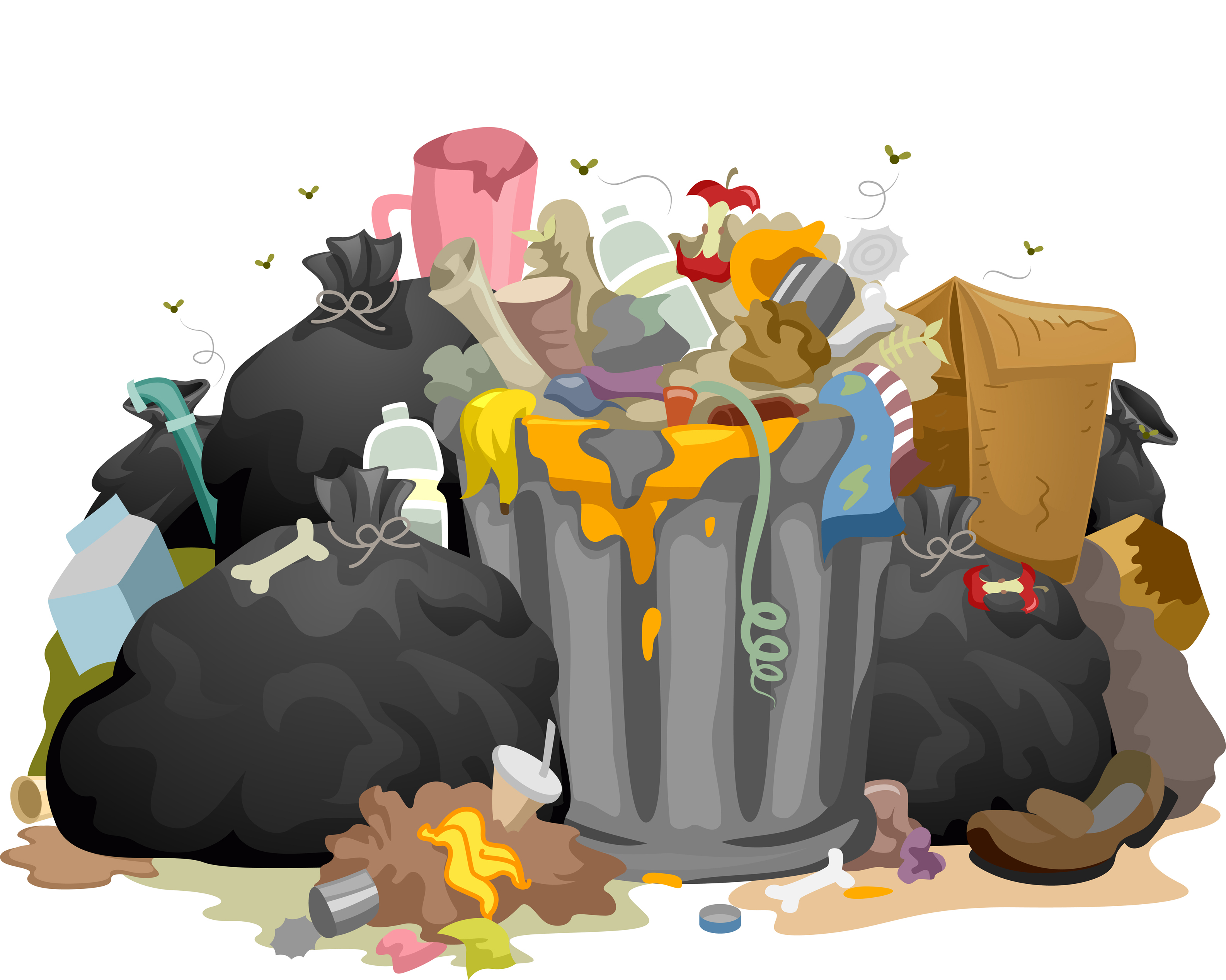 CHINA'S RECYCLE BAN… EFFECTING THE WORLD
