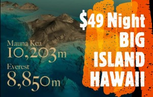 #VacationHawaii $40 a Night 2 person