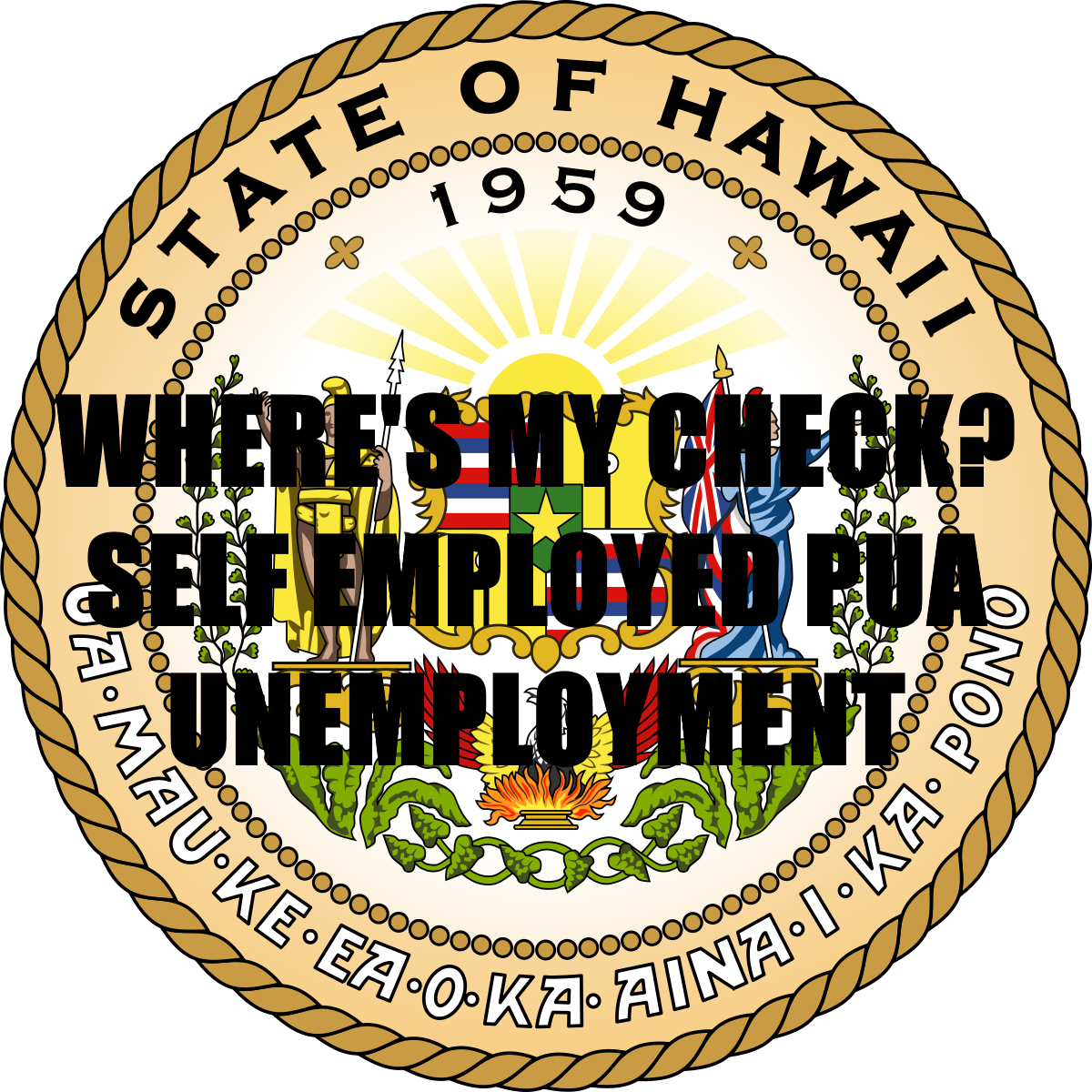 SELF EMPLOYED RELIEF PACKAGE FOR HAWAII???